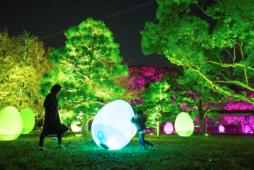 「ちばアート祭2020」でチームラボ の作品を展示します!